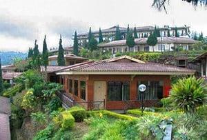 Hotel Bromo Cottage Tosari